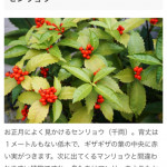 http://milet.hp-tsukurumon.jp/wp-content/uploads/sites/5989/2020/10/header20201018192022_867929052.jpg
